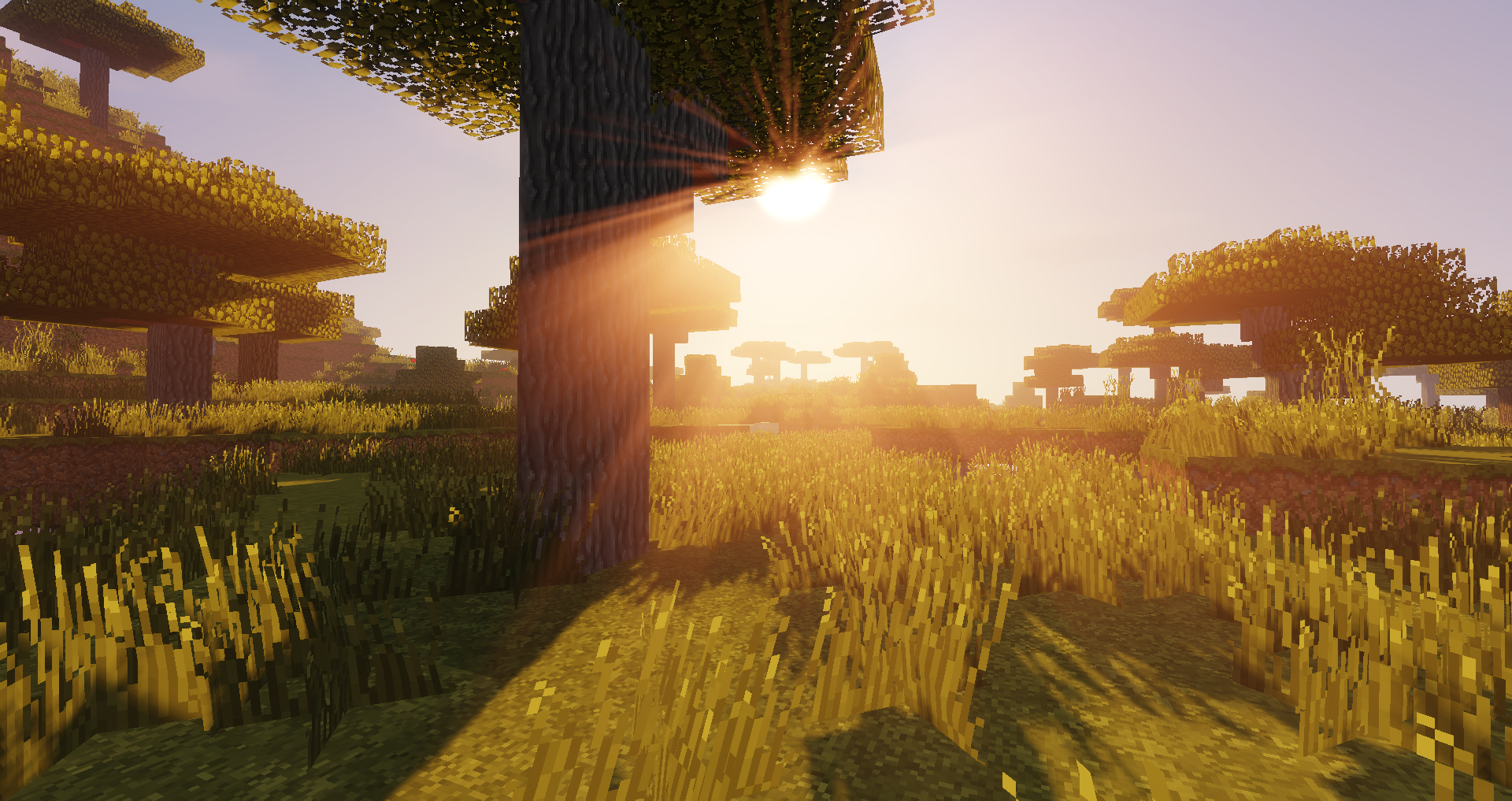 Minecraft best shaders of 2020